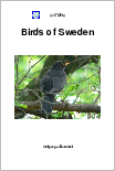 Birds of Sweden