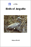 Birds of Anguilla