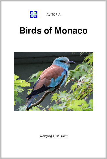 Birds of Monaco - Click Image to Close